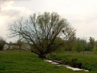 Rzeka Węgierka